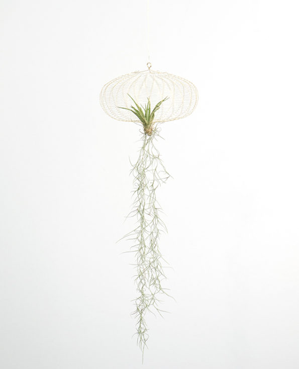 air planting – brass M ⊘20cm