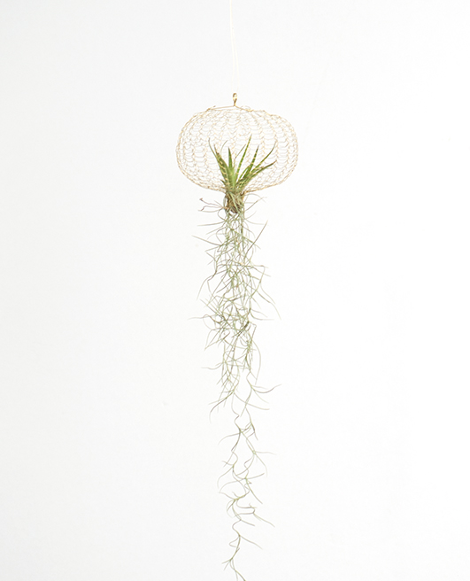 air planting – brass small ⊘15cm